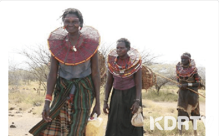 Pokot women walking through pastureland wearing their iconic ornate beadwork
